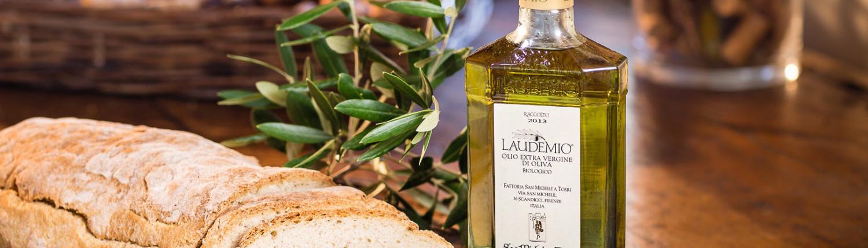 laudemio_crop_YML9701